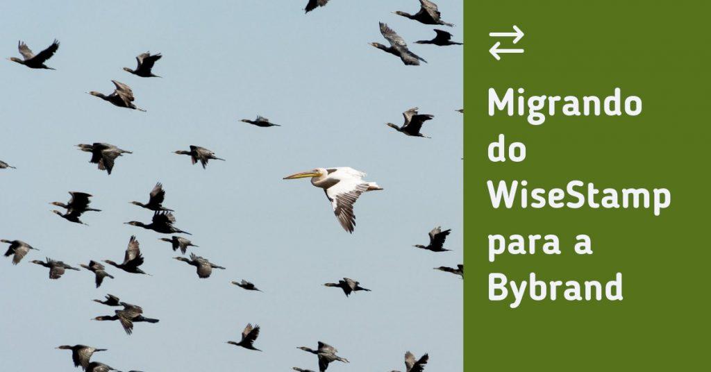 Migrando do WiseStamp para a Bybrand